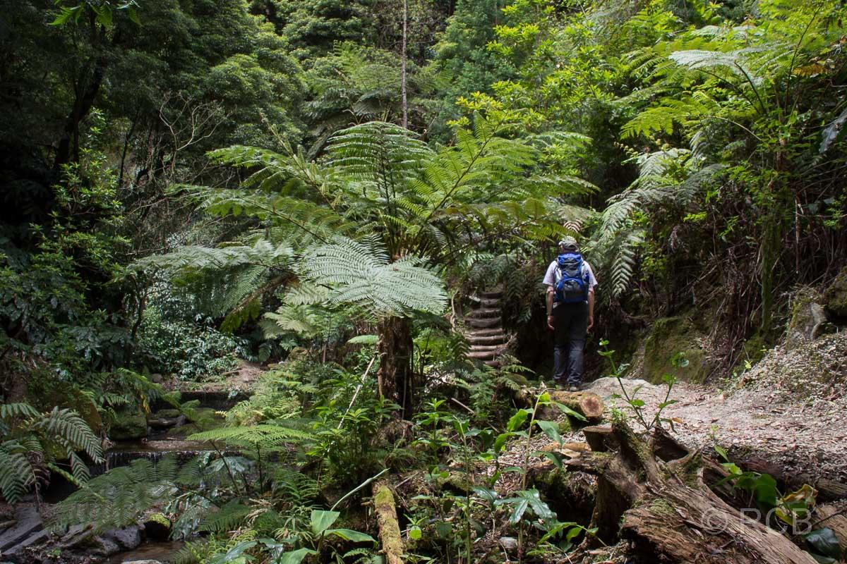 Abstecher zum Wasserfall Ribeira do Rosal