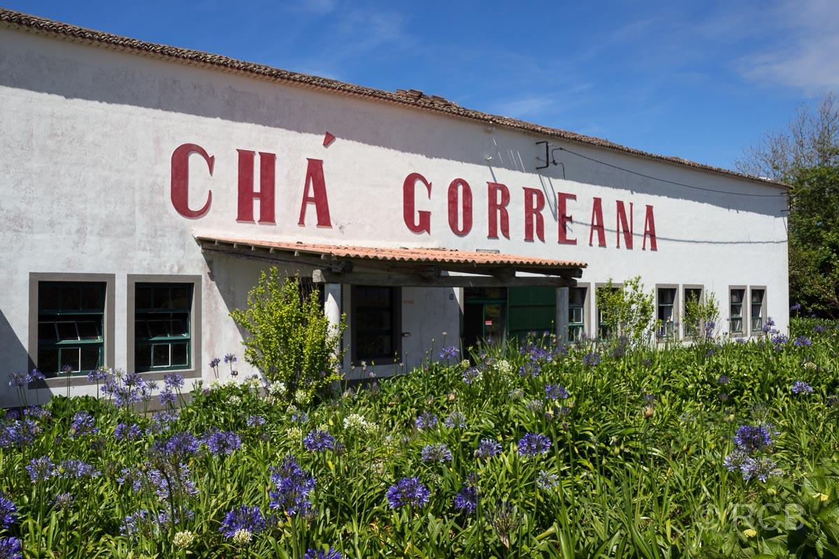 Teefabrik Cha Gorreana