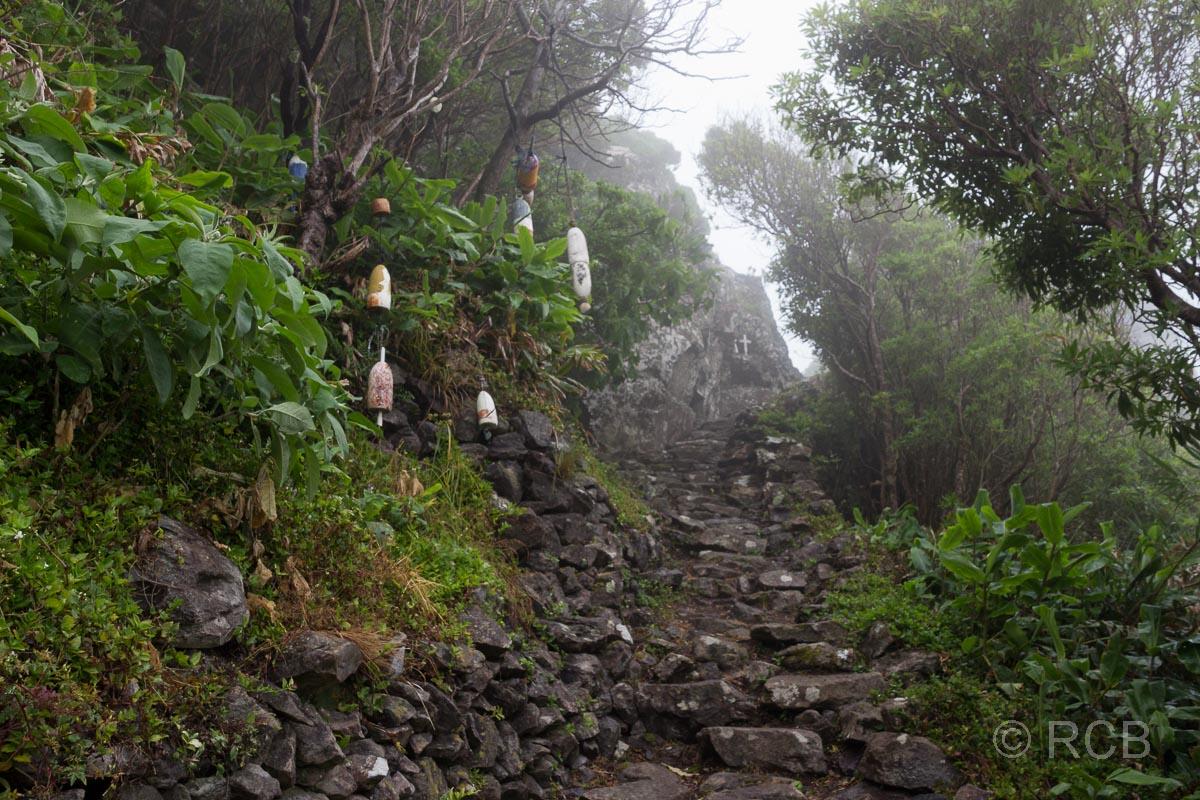 Abstieg zur Fajã de Lopo Vaz