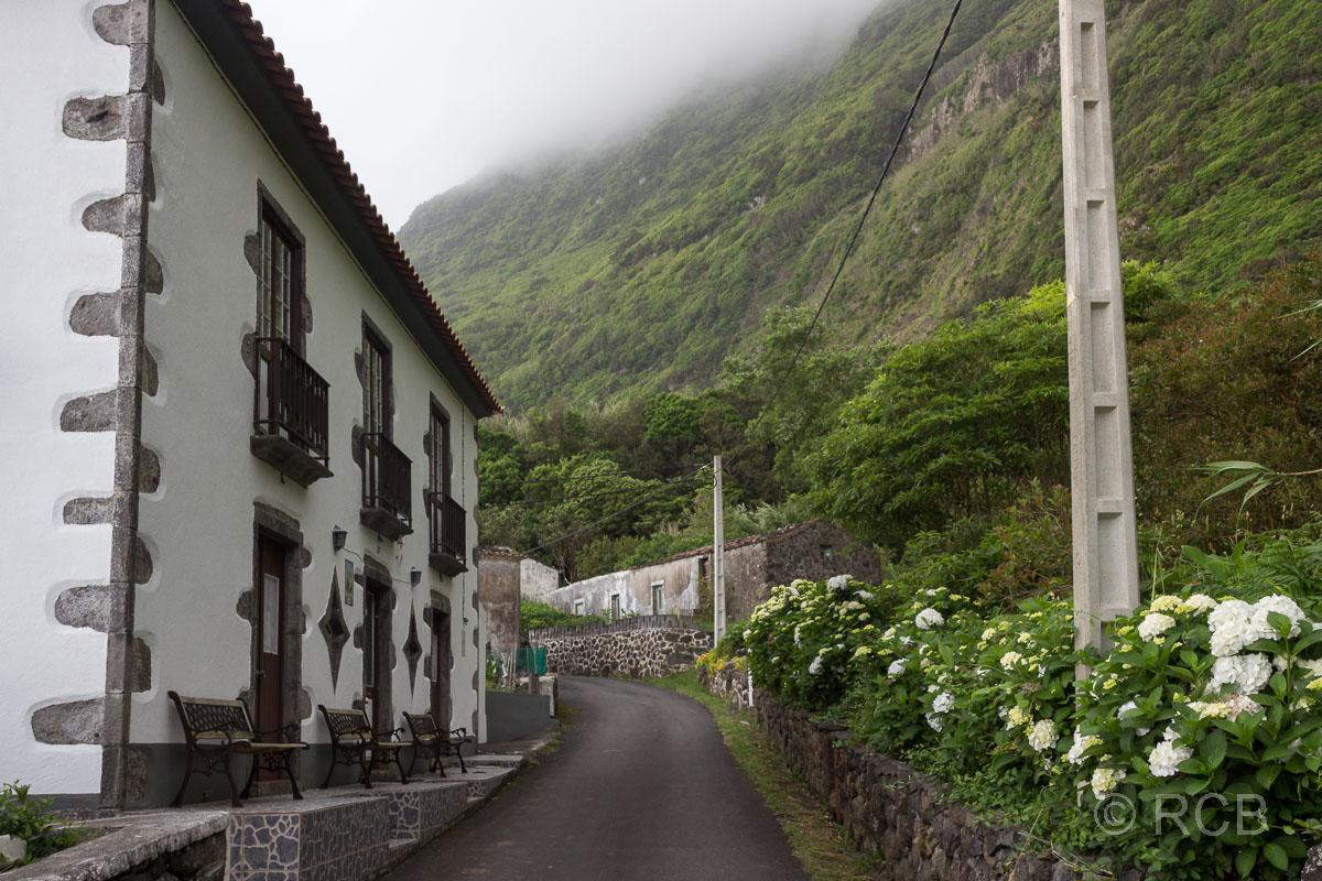schwarzweißes Haus und Hortensien in Ponta da Fajã