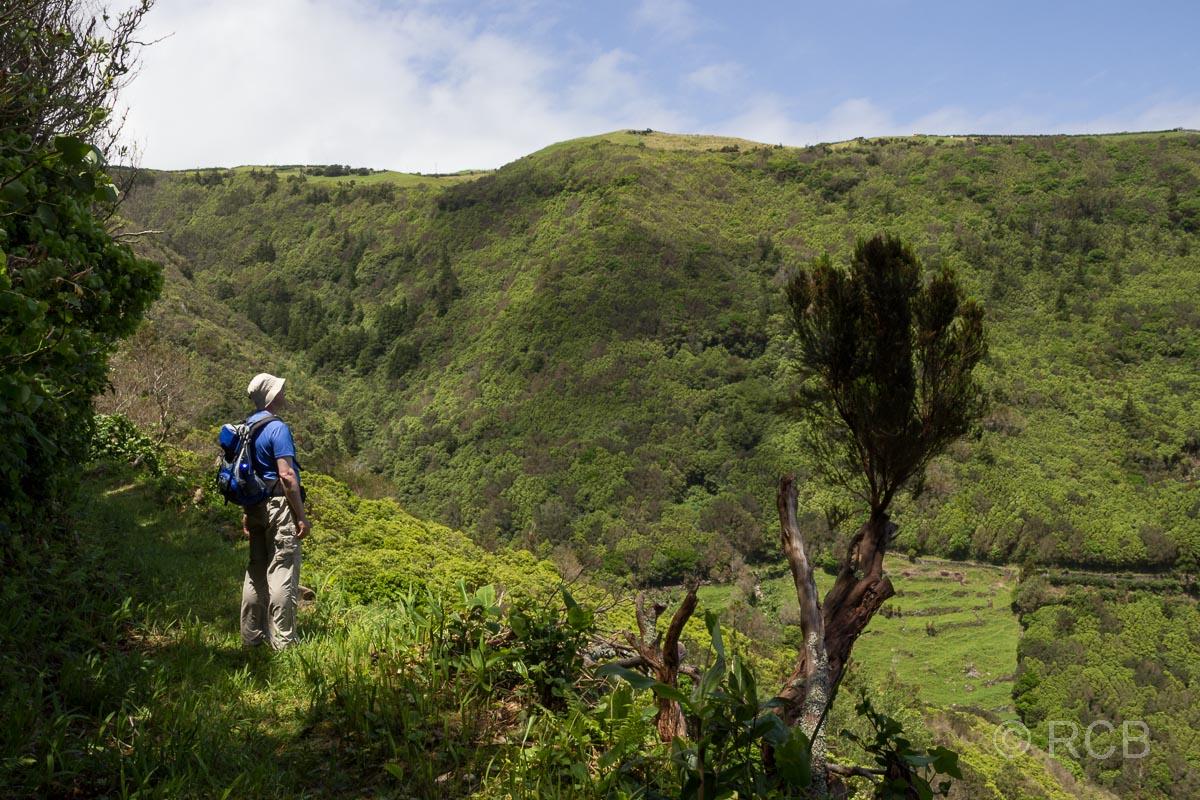 Mann betrachtet die grüne Landschaft auf einer Wanderung von Cedros nach Ponta Ruiva