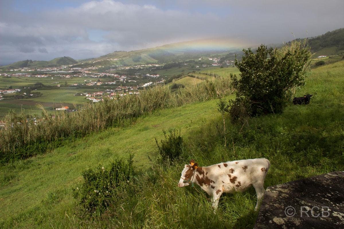 Blick auf Horta mit Regenbogen