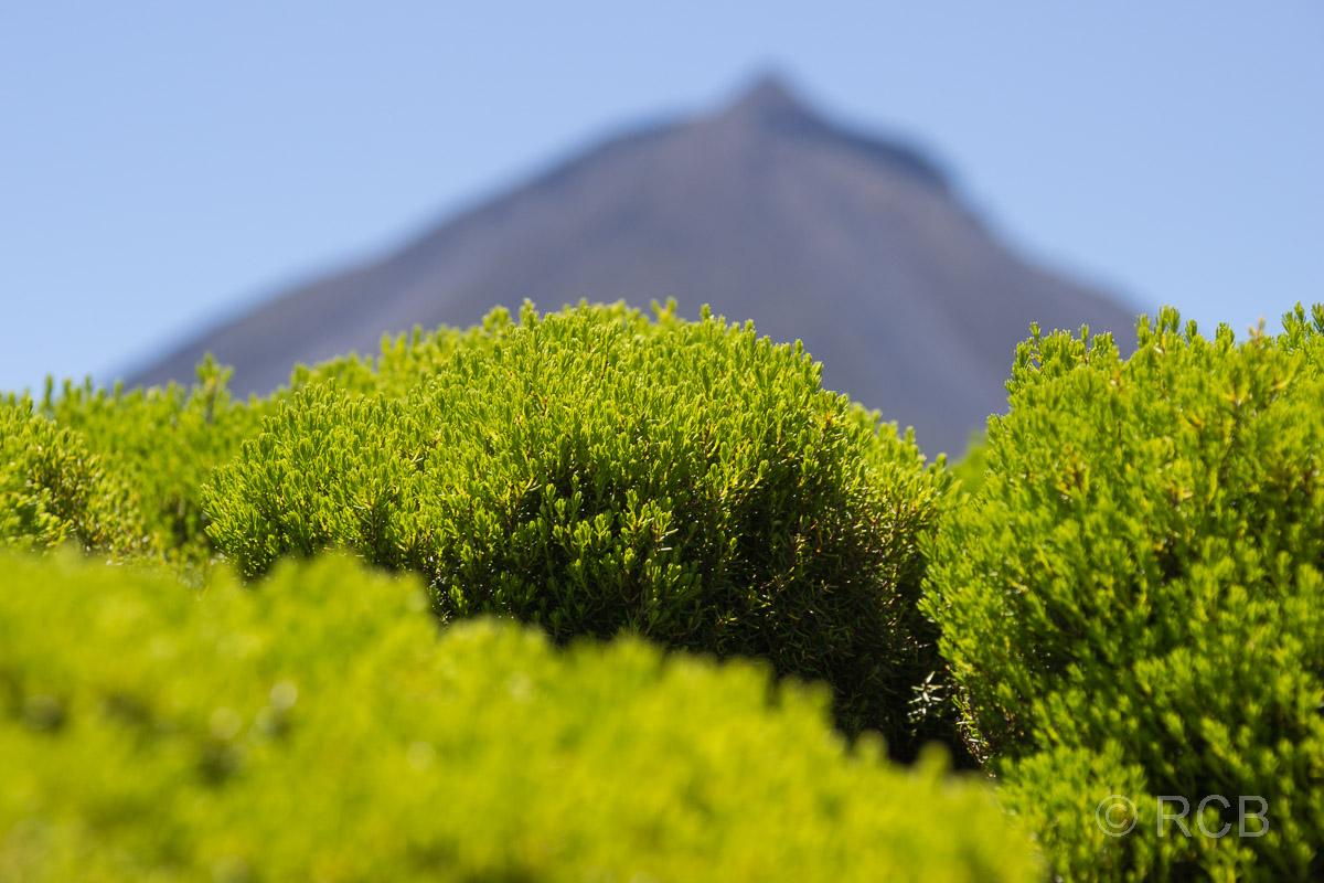 Blick zum Pico