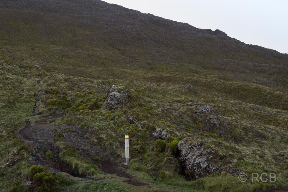 Pfähle markieren den Weg beim Aufstieg auf den Pico.