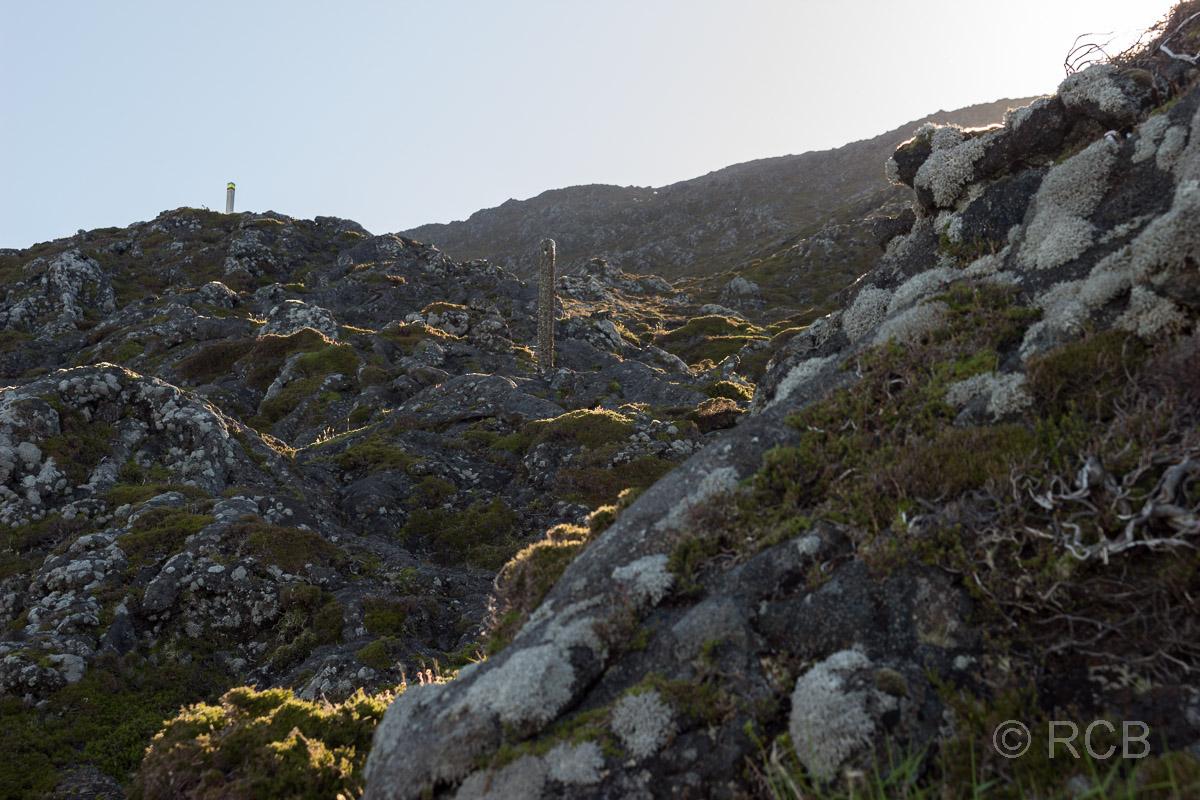 die Sonne bestrahlt langsam die ersten Flecken beim morgendlichen Aufstieg auf den Pico