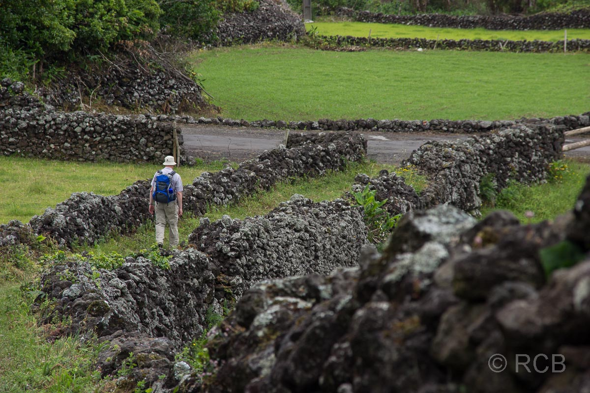 Wanderer geht durch mit Mauern abgegrenzte Felder hindruch auf dem PRC11PIC