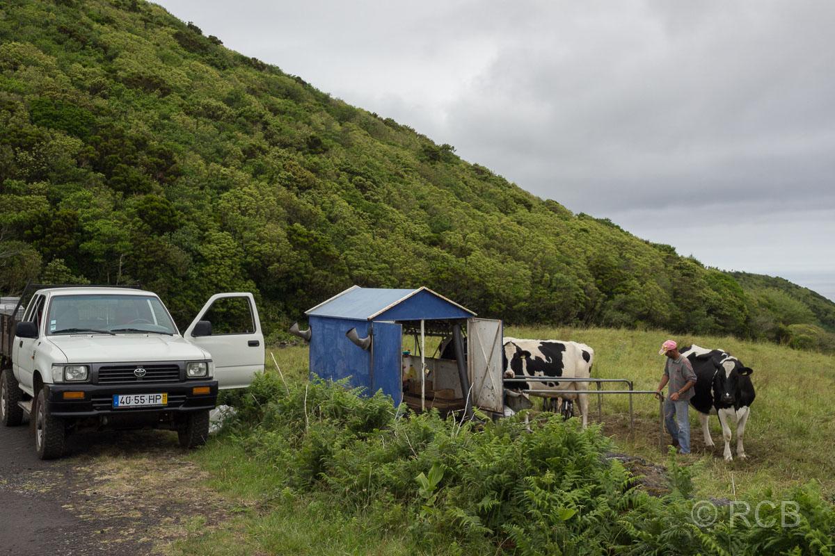 Milchbauer im Hochland