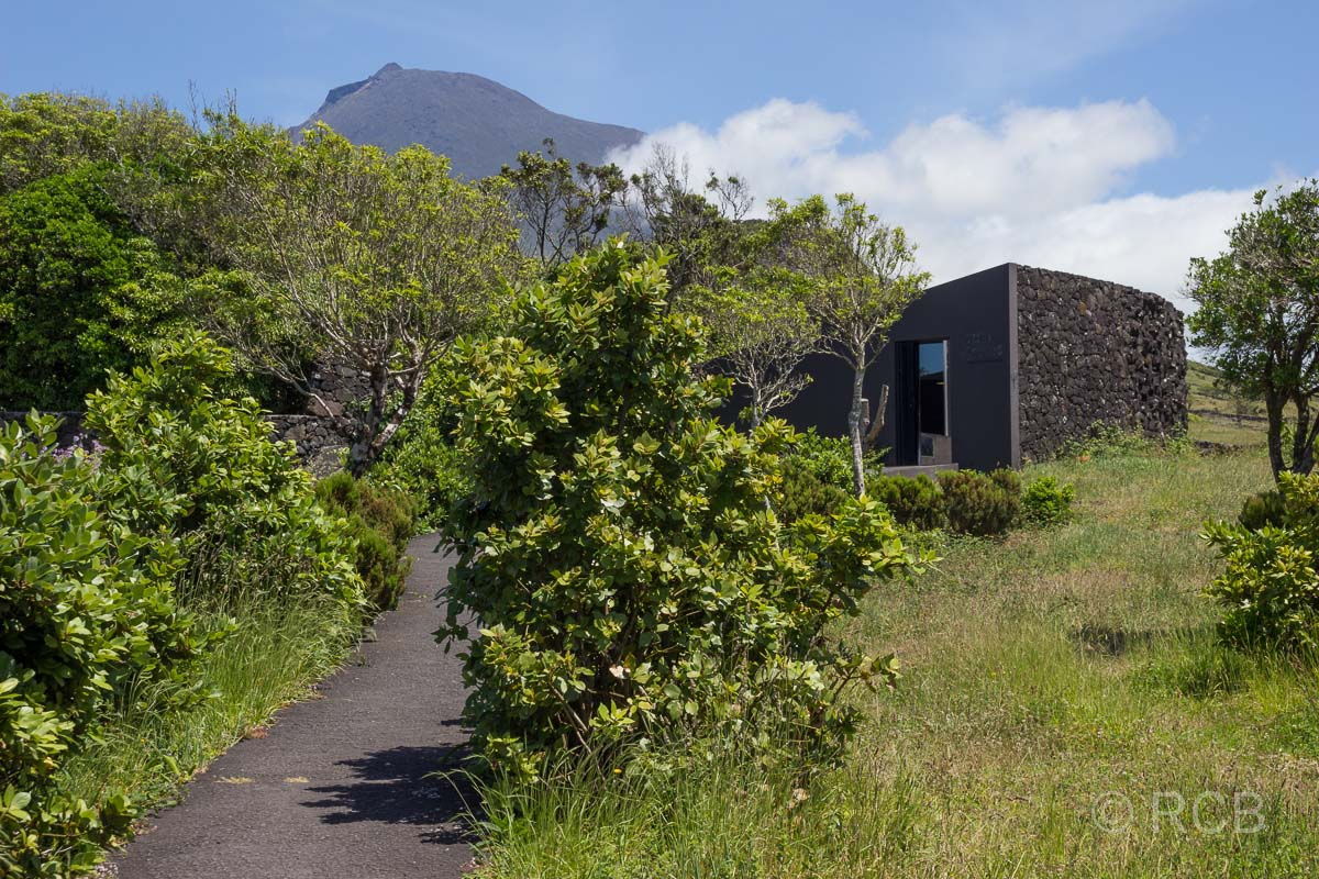 Eingang zur Lavahöhle Gruta das Torres, im Hintergrund der Pico