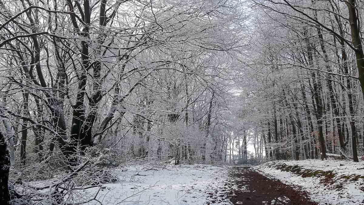 Wintertag am Bergerhof