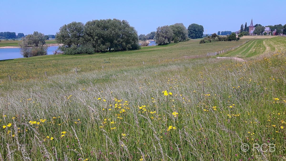 Bislich und Flürener Heide