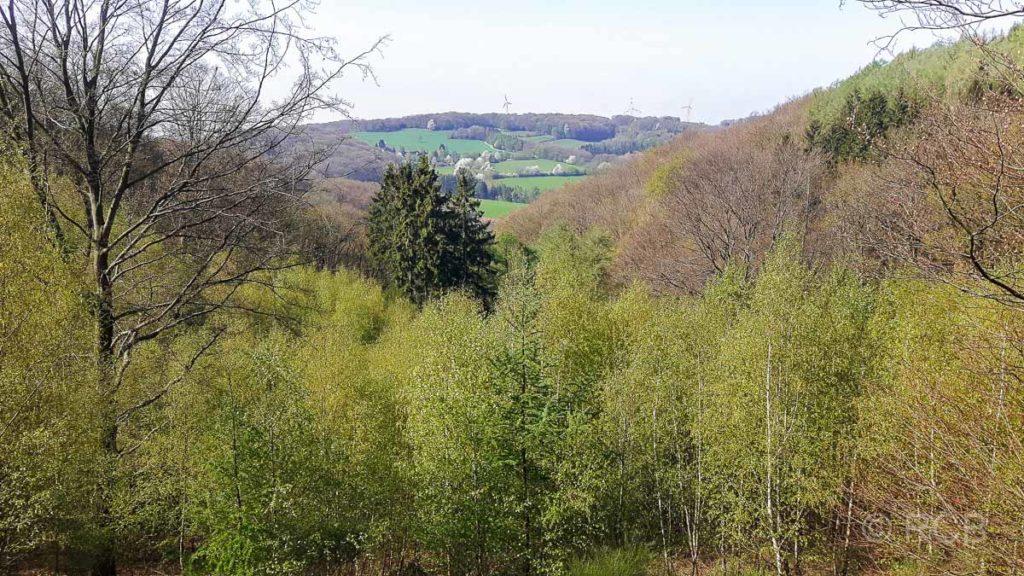 Hügellandschaft in der Elfringhauser Schweiz
