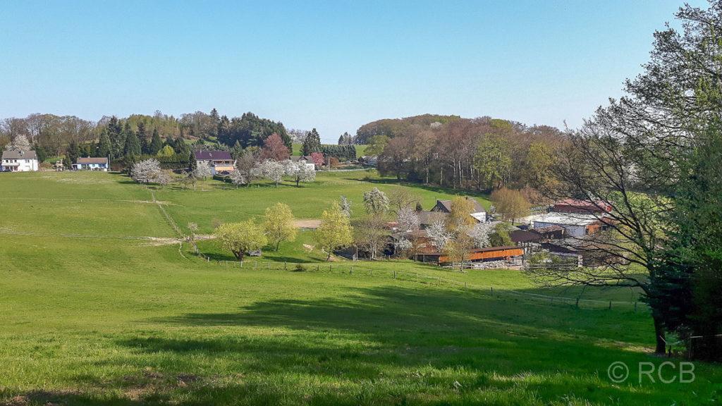 Häuser und Landschaft in der Elfringhauser Schweiz