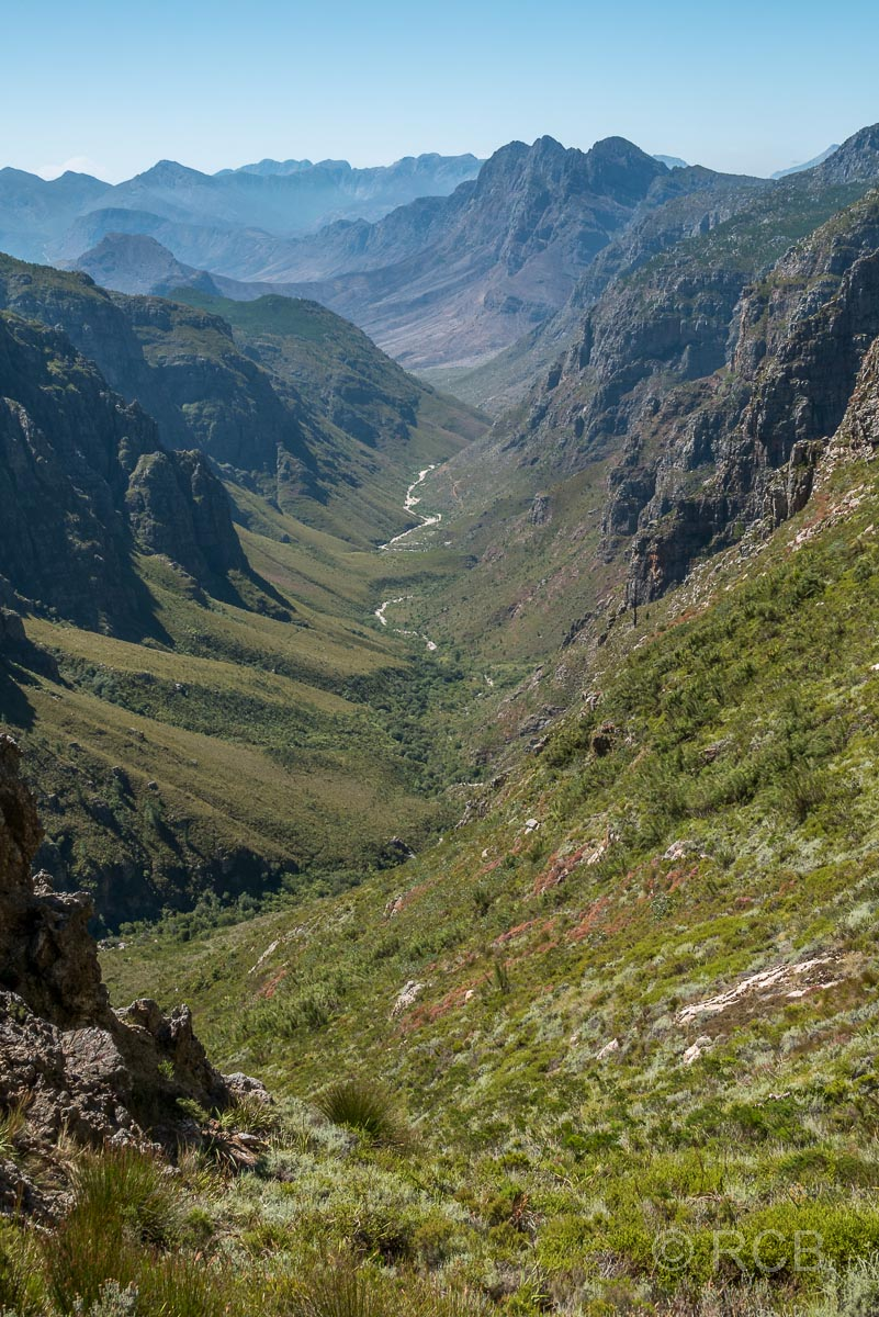 Ausblick vom Bergriviersnek Richtung Assegaiboschkloof