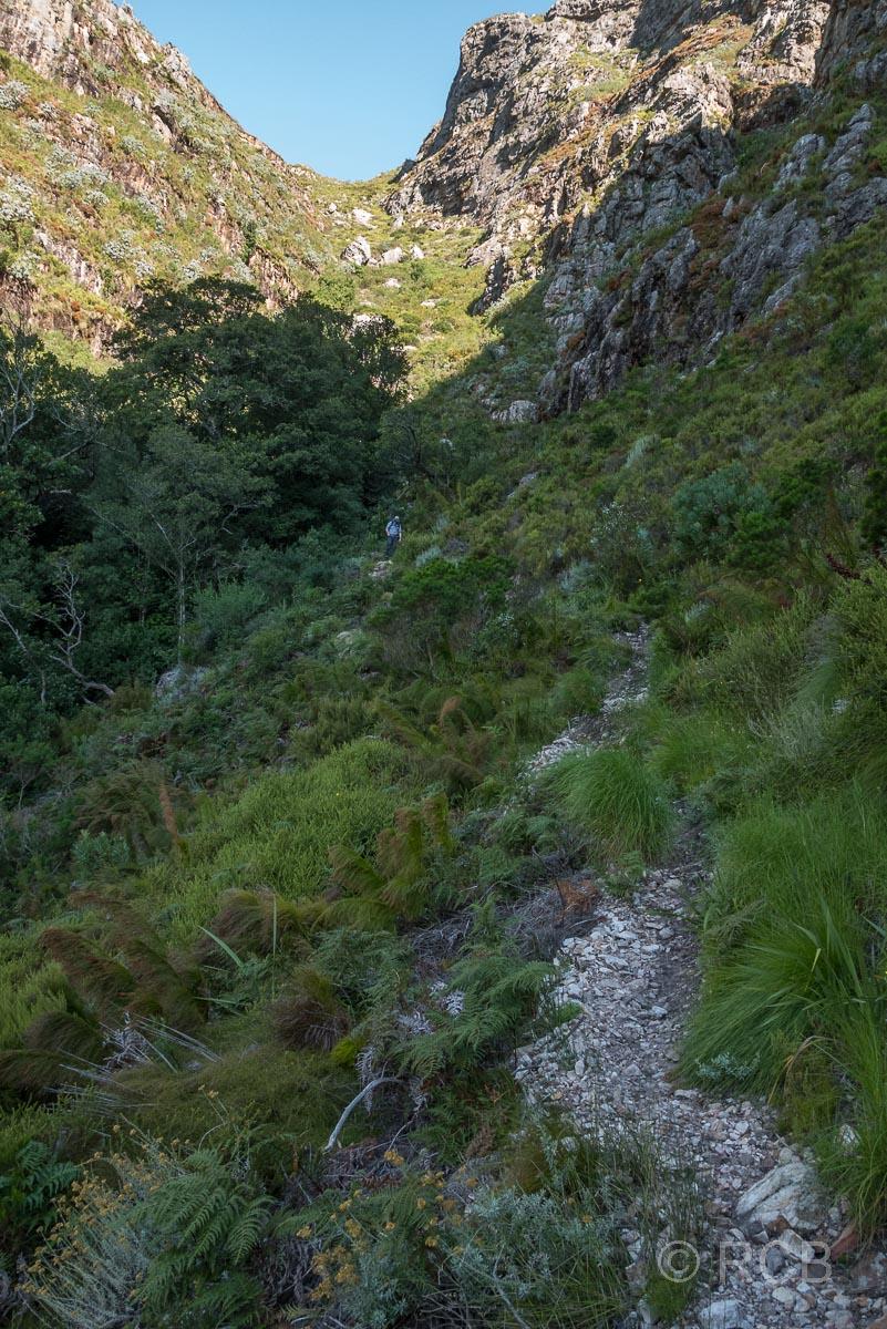 "steiler Abstieg über den ""Kurktrekker"" (Korkenzieher)"