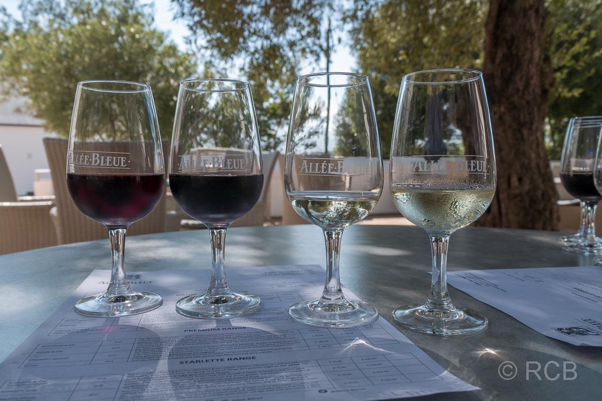 """Weingut """"Allée bleue"""", gefüllte Gläser bei einer Weinverkostung"""