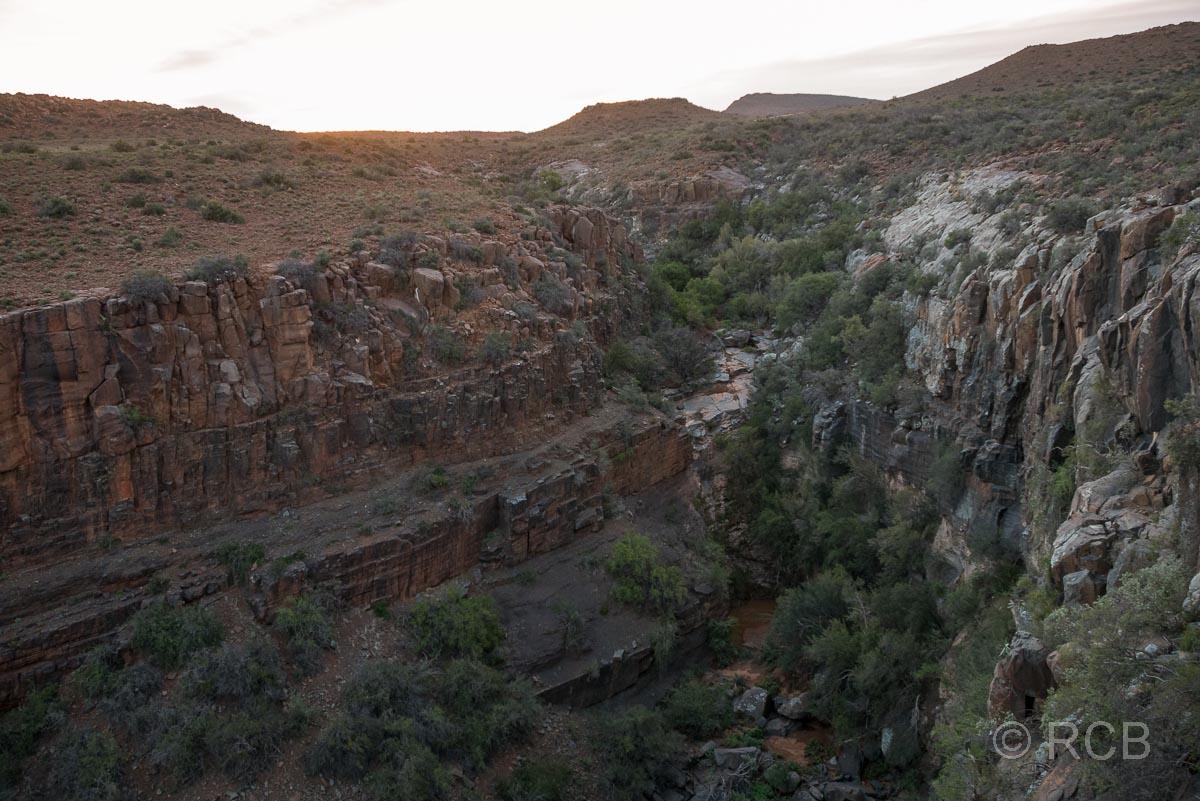 am Klipspringer's Pass, Karoo NP