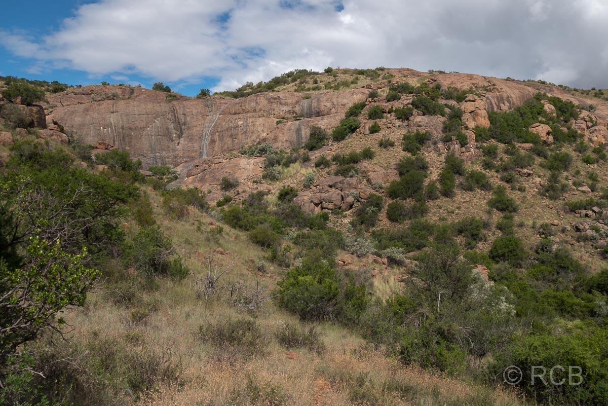 am Black Eagle Trail, Mountain Zebra National Park