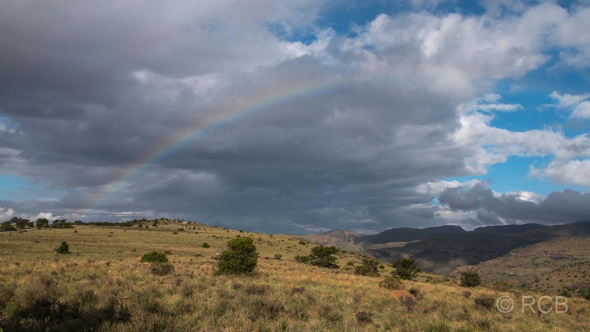Regenbogen über dem Rooiplaat Loop, Mountain Zebra National Park