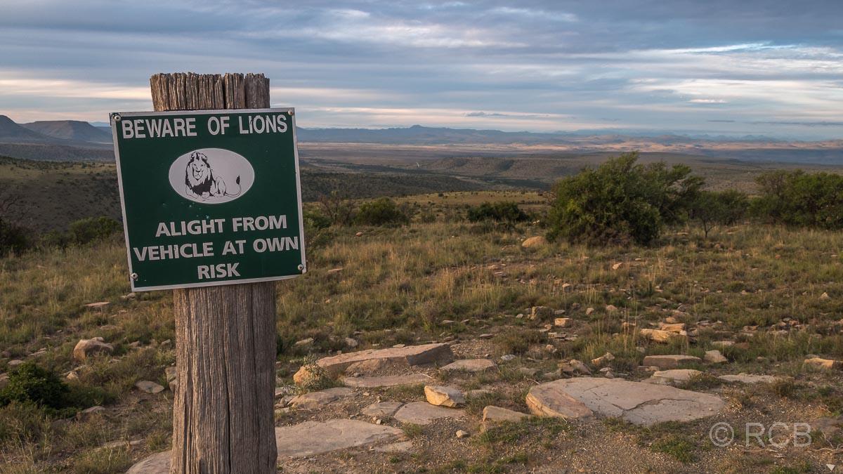 Warnschild vor Löwen im Mountain Zebra National Park