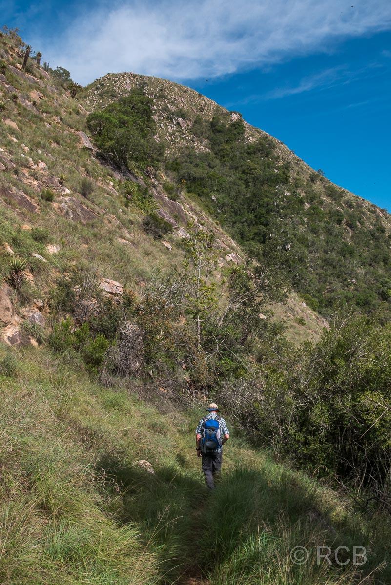 Mann wandert auf dem Doringhek Trail im Addo Elephant National Park