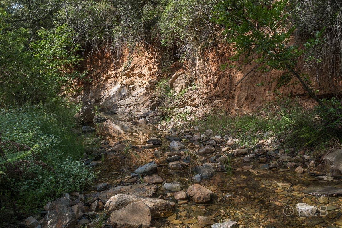Felswand und kleiner Bach, Doringhek Trail, Addo Elephant National Park