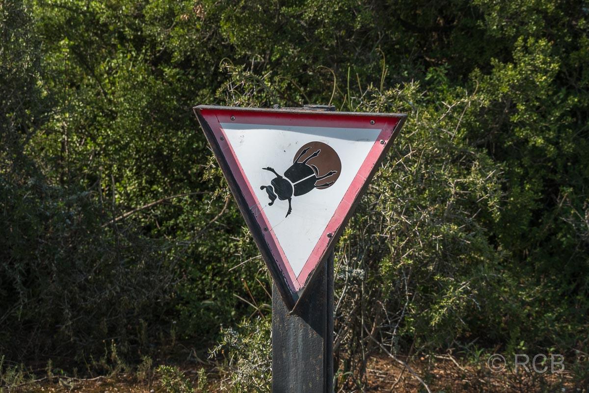 Schild, das vor Mistkäfern auf dem Weg warnt, Addo Elephant National Park