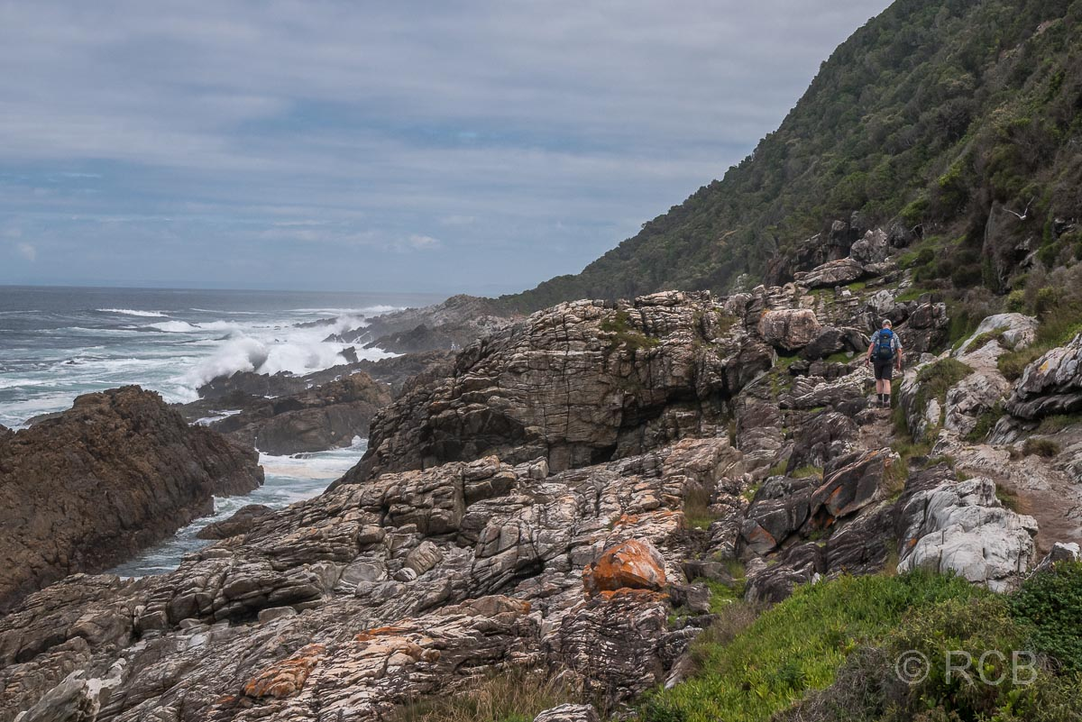 Waterfall Trail, Tsitsikamma Section des Garden Route National Park