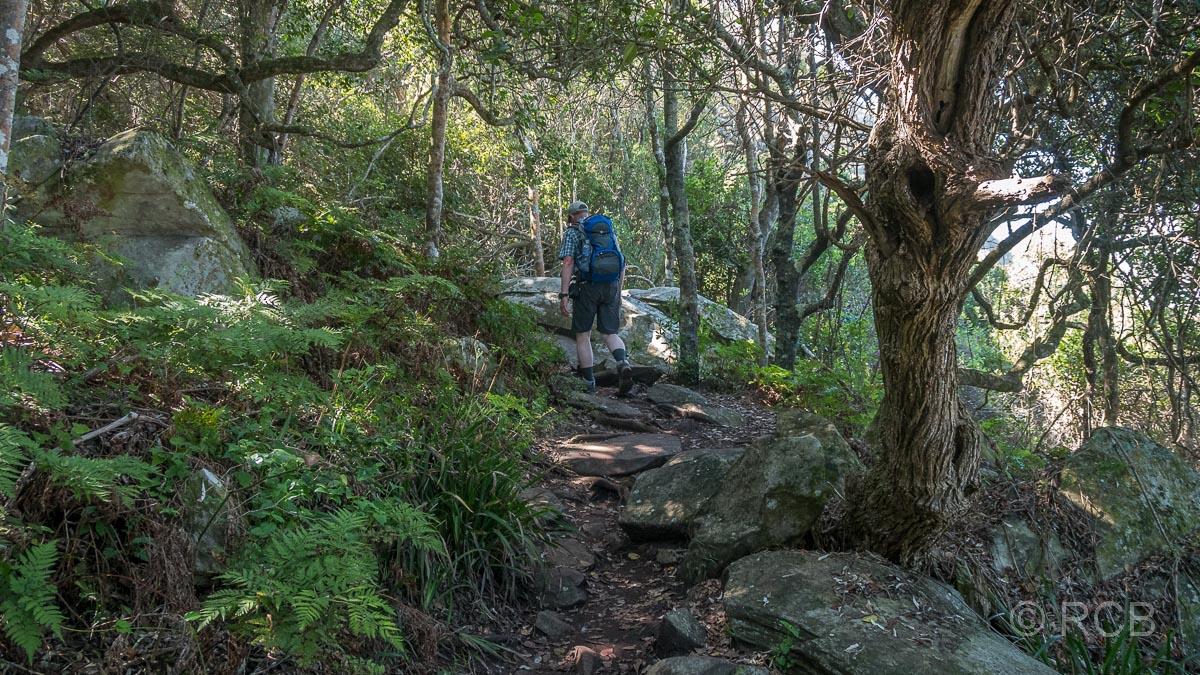 Wanderer auf dem Waterfall Trail, Tsitsikamma Section des Garden Route National Park