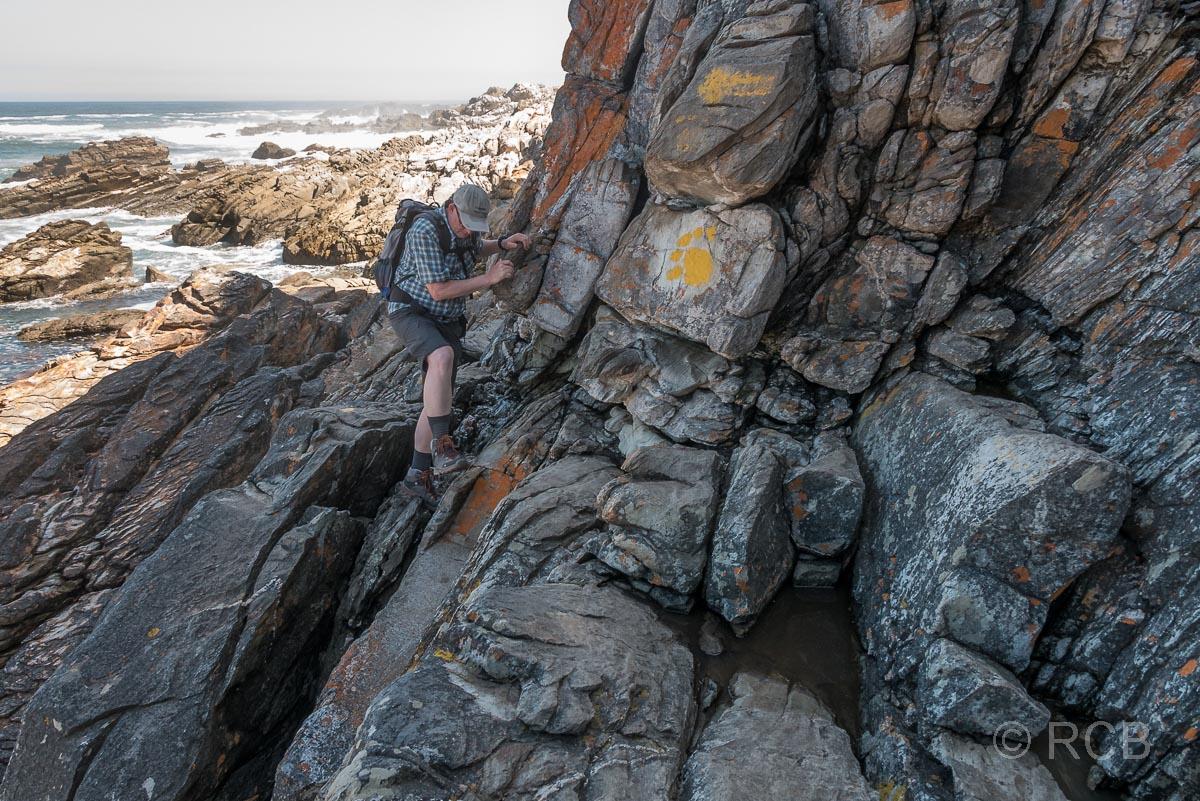 Mann klettert über Felsen auf dem Waterfall Trail, Tsitsikamma Section des Garden Route National Park