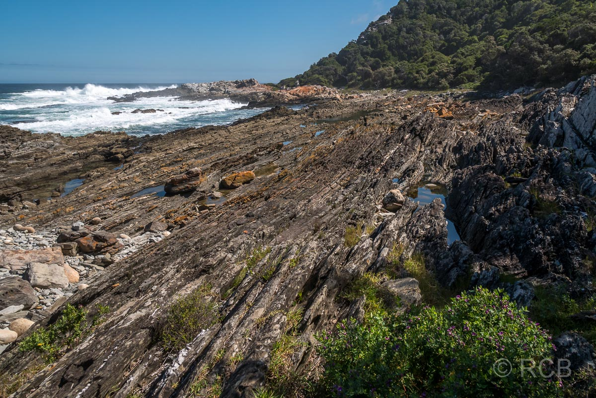 felsige Küste auf dem Waterfall Trail, Tsitsikamma Section des Garden Route National Park