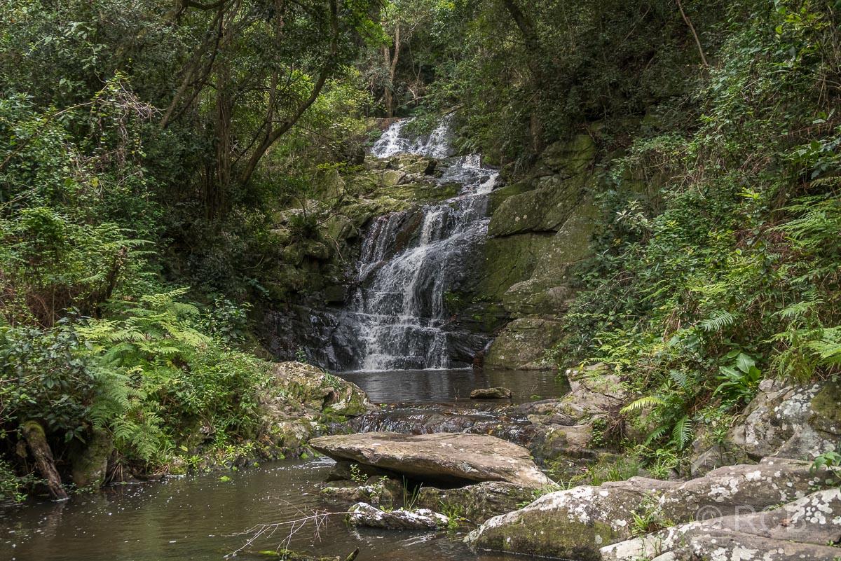 Wasserfall am Blue Duiker Trail, Tsitsikamma Section des Garden Route National Park