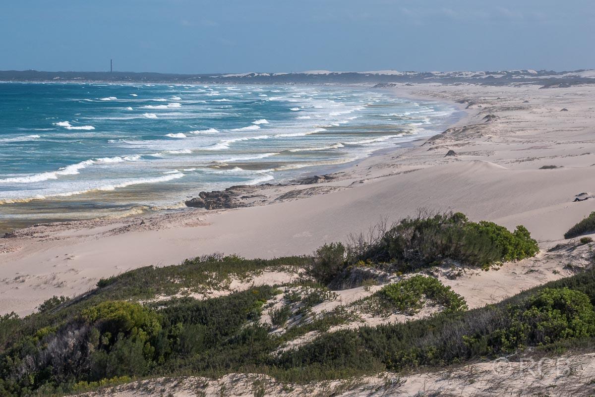Strand mit Dünen, Koppie Alleen, De Hoop Nature Reserve