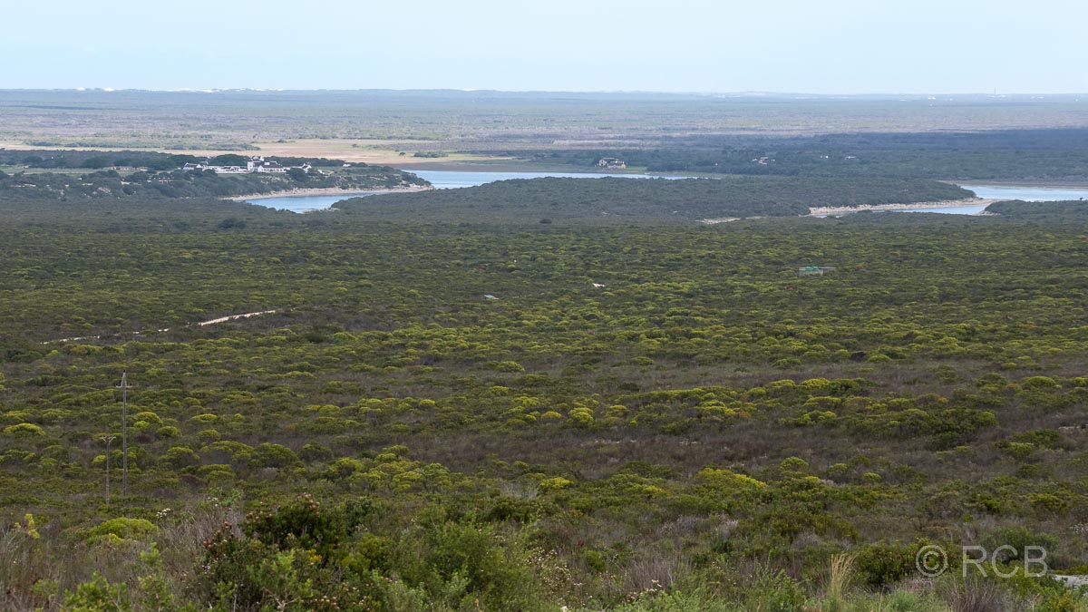 "Blick über den Binnensee ""Vlei"", De Hoop Nature Reserve"