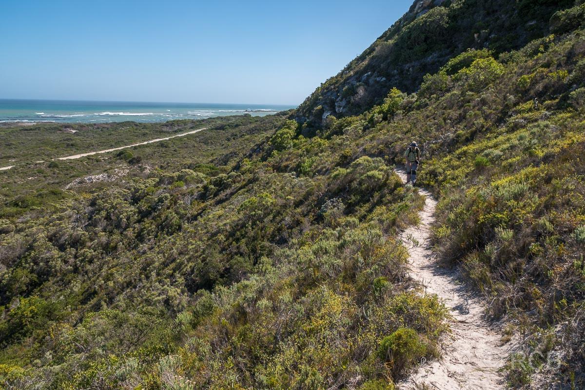 der Rasperpunt Hiking Trail verlässt die Küste und führt hinauf auf die Höhen des Agulhas National Park