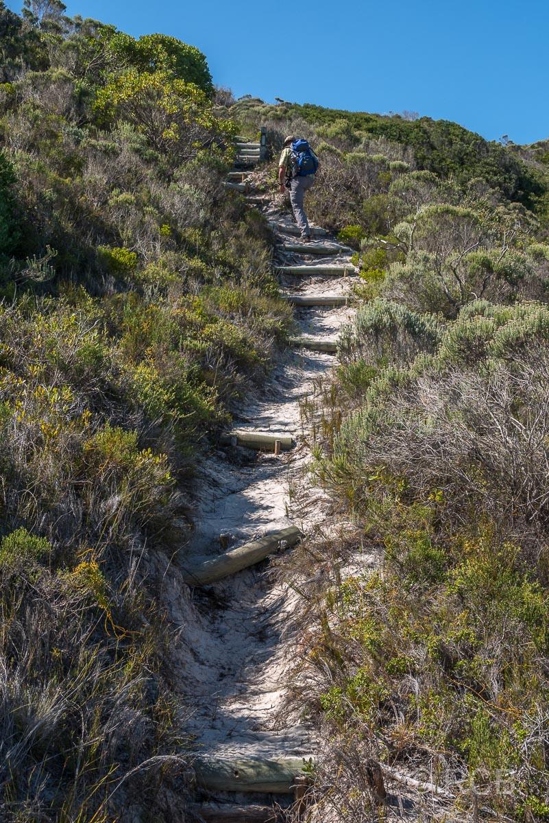 Mann erklimmt Stufen eine Düne hinauf auf dem Rasperpunt Hiking Trail, Agulhas National Park