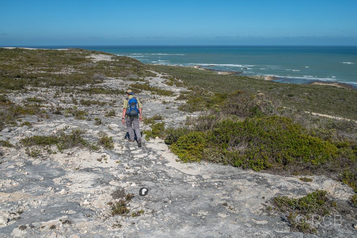 Mann wandert mit weitem Blick auf die Küste auf dem Rasperpunt Hiking Trail, Agulhas National Park