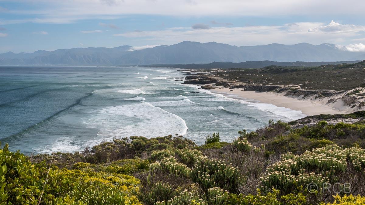 Blick über das Walker Bay Nature Reserve