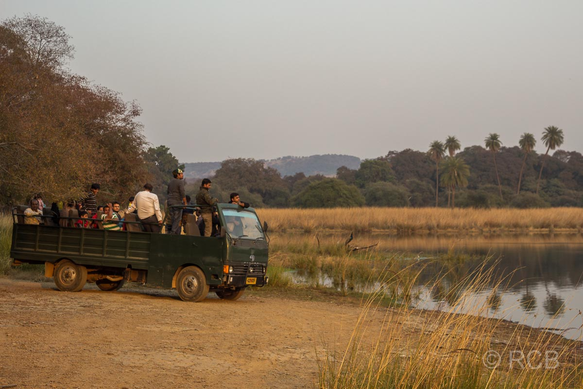 Canter Truck, Ranthambore National Park