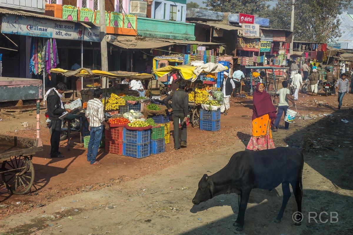 Gemüseverkäufer auf der Fahrt durch Rajasthan