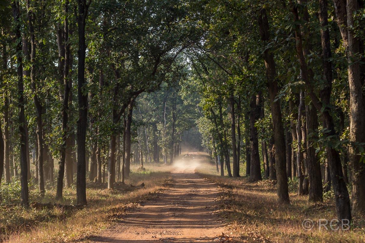 Einfahrt in den Kanha National Park