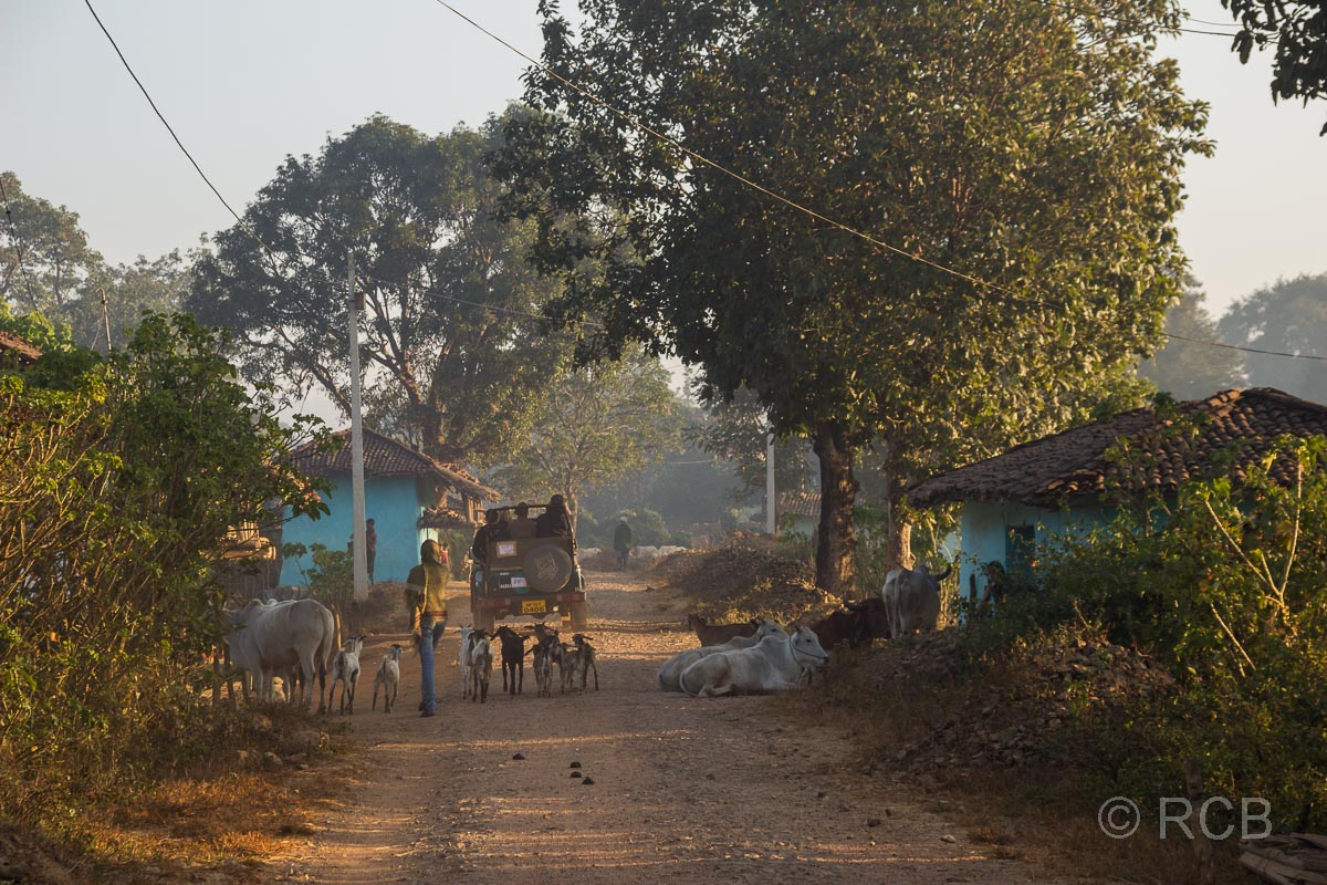 Dorfstraße in der Nähe des Kanha National Park