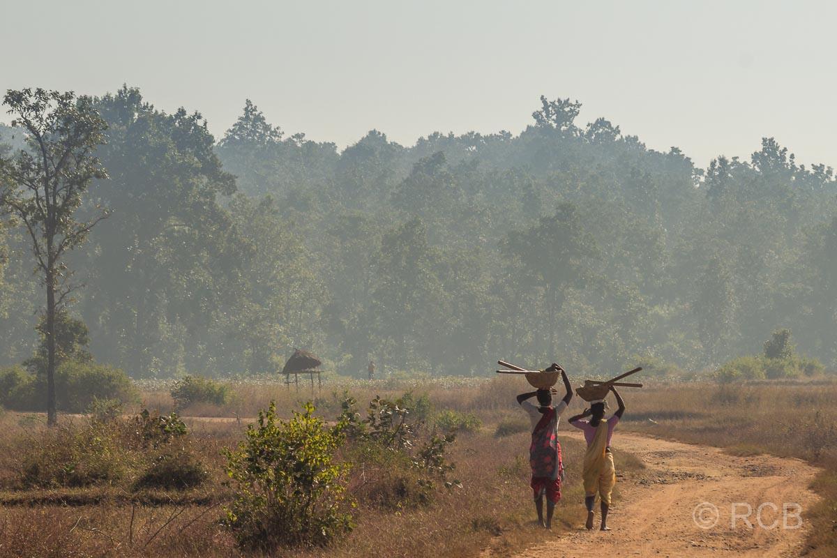2 Inder tragen Gefäße auf dem Kopf auf einer Landstraße in der Nähe des Kanha National Park