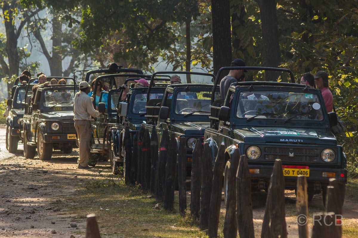 Jeeps warten in langer Schlange auf Einlass im Kanha National Park