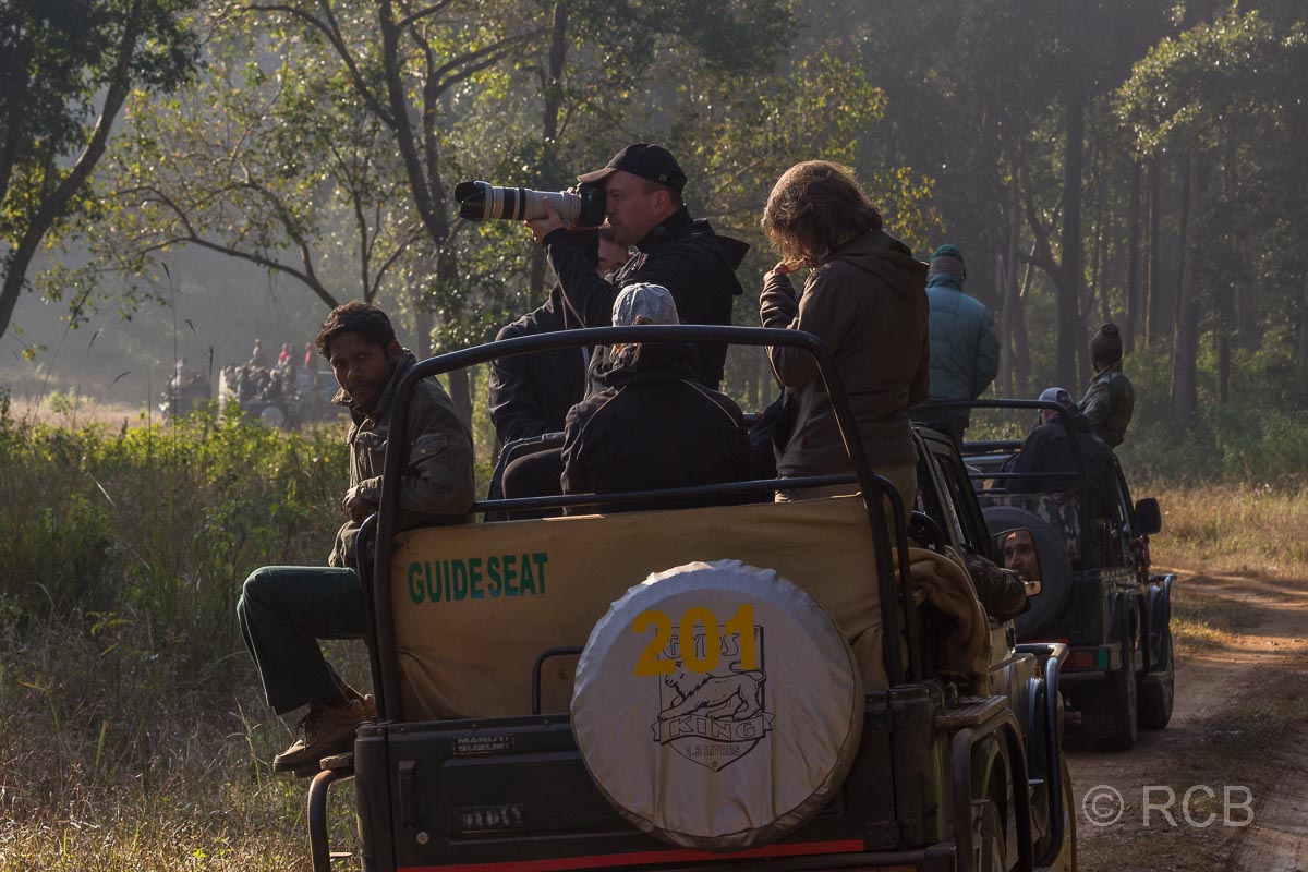auf Tigerpirsch, Kanha National Park