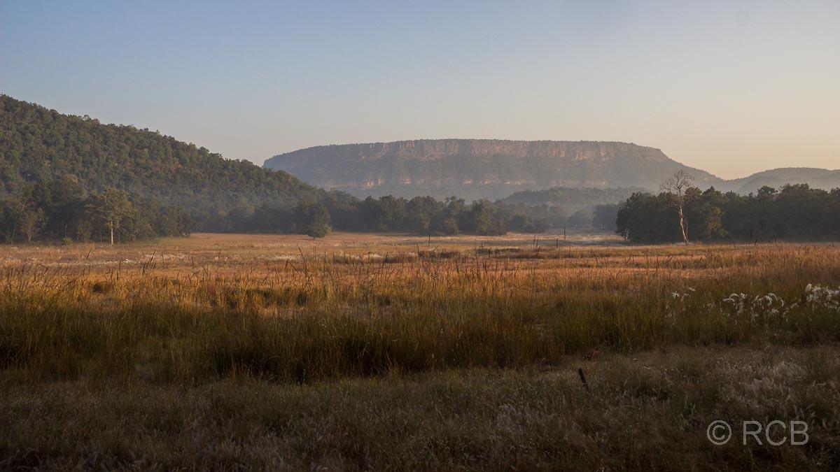 Landschaft mit Wiesen und Bergen, Bandhavgarh National Park