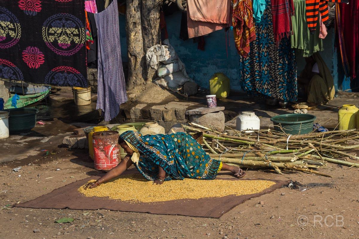 Frau legt Getreide zum Trocknen aus, Uttar Pradesh