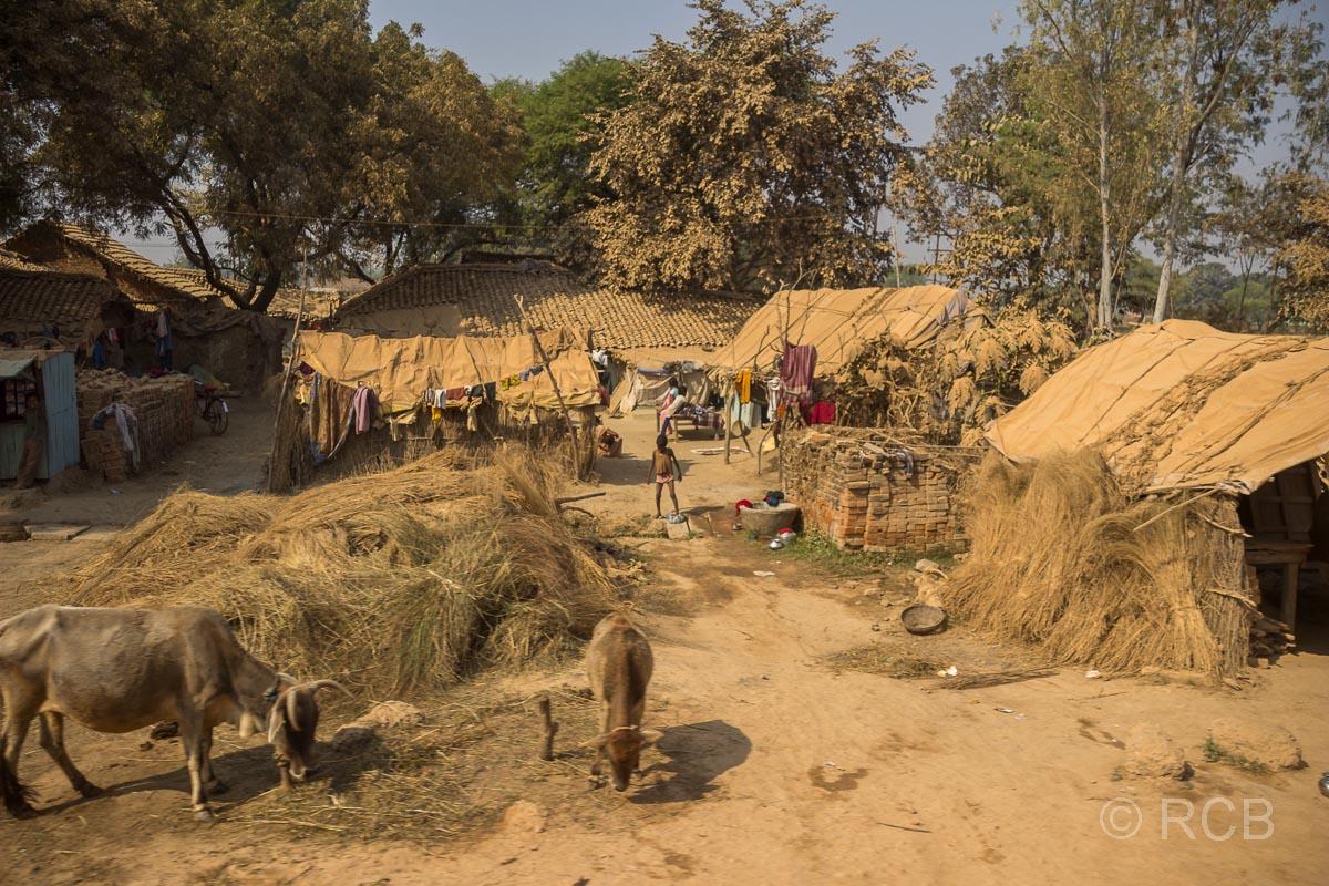 Hütten am Straßenrand, Fahrt durch Uttar Pradesh
