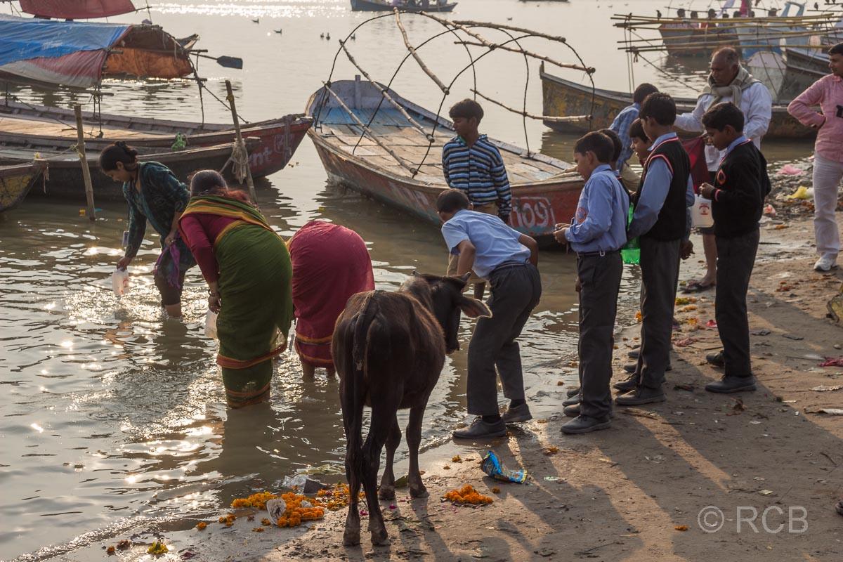 Allahabad, Gläubige schöpfen Wasser am Sangam, dem Zusammenfluss von Ganges und Yamuna