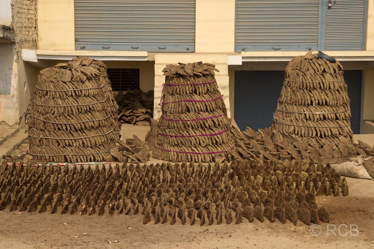 Fahrt durch Uttar Pradesh, getrockneter Kuhdung, z.T. zu Türmen gestapelt