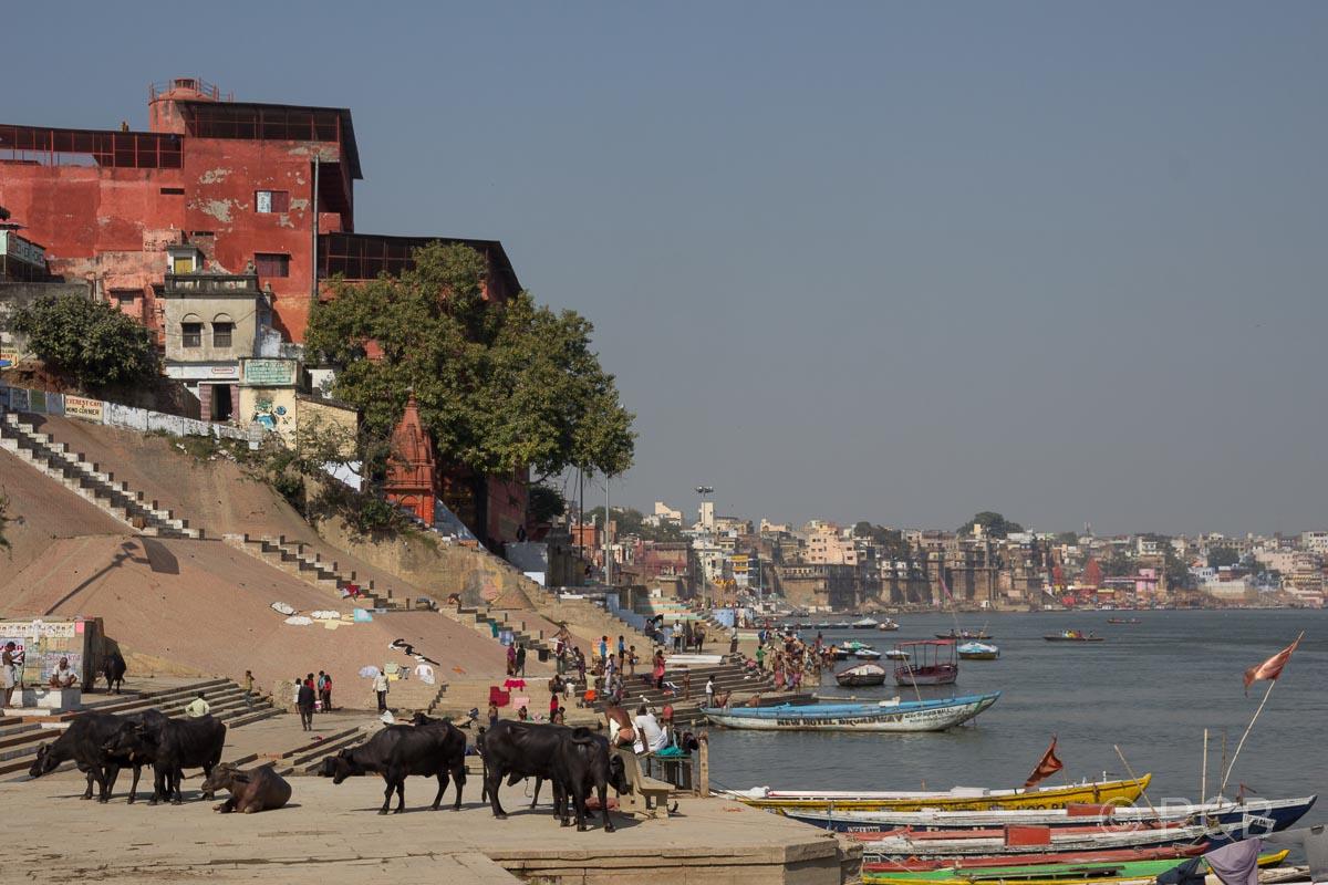 Varanasi, an den Ghats mit Blick zur Altstadt
